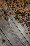 Del bosque todavía del otoño vida 2 Foto de archivo libre de regalías
