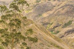 Del Diablo Trip Landscape Scene de Nariz Foto de archivo libre de regalías