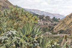 Del Diablo Trip Landscape Scene de Nariz Foto de archivo