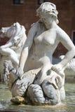del Fontana nettuno Obrazy Stock
