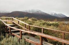 del Fuego tierra ushuaia Zdjęcia Stock