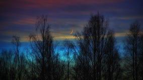 Del invierno abedul del cielo de la luna de la puesta del sol al aire libre Fotografía de archivo libre de regalías