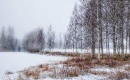 Del invierno landscape colores claros del hielo del lago al aire libre Imagen de archivo libre de regalías