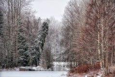Del invierno del paisaje naturaleza de los árboles al aire libre hermosa Imágenes de archivo libres de regalías