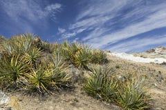 del isla sol 太阳的海岛 流星锤 Titicaca湖 南A 图库摄影