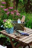 Del jardín todavía del trabajo vida en verano Flores, guantes y herramientas de la manzanilla en la tabla de madera al aire libre Foto de archivo