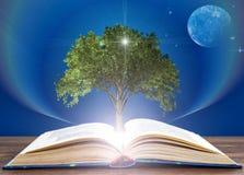 Del libro ampliado crece el árbol del conocimiento Concepto de la educaci?n foto de archivo