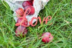""" del """"Love†en hierba entre manzanas rojas Imagen de archivo"""