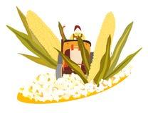 Del maíz a las palomitas ilustración del vector