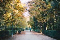 del Madrid parque retiro Obrazy Royalty Free