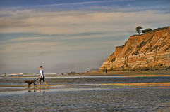 Del Mar Dog Beach, Californa. A woman walks her dog at the famous Dog Beach in Del Mar, California, a tourist destination for travellers with dogs, with eroded stock photography