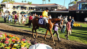 Del Mar  Race Track. #10 THE WINNER AT 24-1. PAINT MY FRIEND LILI  $125 on a $5 bet Stock Photos
