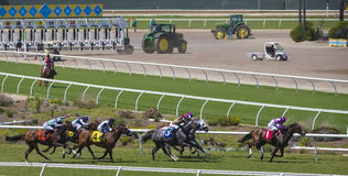 Del Mar Racetrack, California. Fast race horses compete to win, with hoofs flying, the jockeys holding tight leading the horses on, in their colors, at the Del Royalty Free Stock Photos