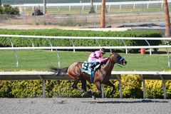 Del Mar Thoroughbred Club - Garrett Gomez Stockfotos
