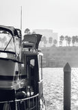 del marina ακτίνα Στοκ φωτογραφίες με δικαίωμα ελεύθερης χρήσης