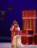 """ del oeste de Chamber†de la boda-Kunqu del """"the forzado de la ópera foto de archivo libre de regalías"""
