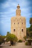 del oro sevilla spain torre Royaltyfri Foto