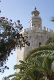 del oro torre στοκ εικόνα