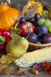 Del otoño de las frutas y verduras todavía del extracto vida Fotografía de archivo