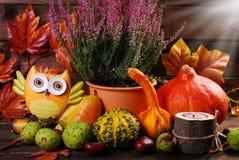 Del otoño todavía de la cosecha vida Foto de archivo libre de regalías