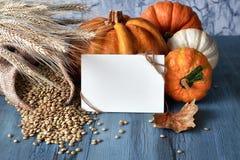 Del otoño todavía de la cosecha vida con las calabazas, los oídos del trigo y las lentejas, Imagen de archivo libre de regalías