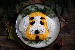 ` Del perro del ` de la ensalada del ` s del Año Nuevo para la celebración de 2018 - el año del perro amarillo Ensalada del pollo Fotografía de archivo libre de regalías