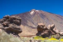 del pico teide Royaltyfri Fotografi