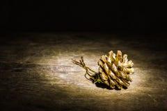 Del pino de los conos y de las agujas todavía de la Navidad vida Imagen de archivo libre de regalías