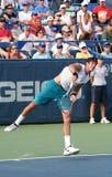 Del Potro: Tennis Player Serve Stock Photos