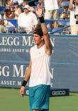 Del Potro: Tennis Player Victory Stock Photo
