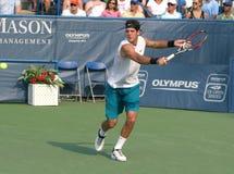 Del Potro: Tennis-Spieler-Rückhandschlag stockfoto
