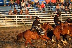 Del professionista cavaliere a cavallo Fotografia Stock