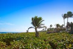 Del Ray Delray beach Florida USA Stock Photography