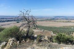 Del Rio Castle, Cordova, Andalusia, Spagna di Almodovar Immagini Stock