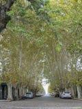 Del Sacramento Uruguai di Colonia Fotografie Stock