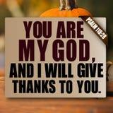 118:28 del salmo di ringraziamento Immagini Stock