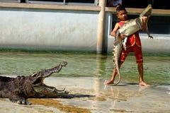 ` DEL ` SAMUTPRAKARN, TAILANDIA - 25 DE DICIEMBRE DE 2016: Es demostración del cocodrilo en la granja el 25 de diciembre de 2016  Imagen de archivo