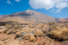 Del Teide Stock Photo