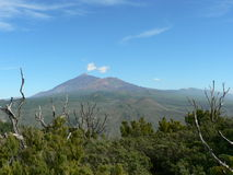 Del teide Royalty Free Stock Images