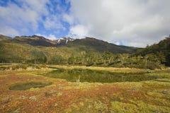 del tierra Fuego Fotografia Royalty Free