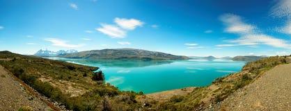 Del Toro de Lago, parque nacional de Torres del Paine, o Chile Imagem de Stock