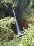 Del Toro Waterfall, Costa Rica Photos libres de droits