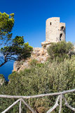 del torre νεωκόρος Στοκ φωτογραφία με δικαίωμα ελεύθερης χρήσης