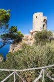 del torre kyrkvaktmästare Royaltyfri Fotografi