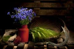 Del verano todavía del campo vida con Cornflower Imagenes de archivo
