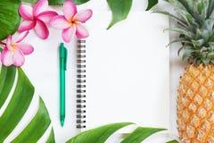 Del verano tropical de la visión superior todavía del concepto cuaderno botánico de la vida Fotografía de archivo libre de regalías