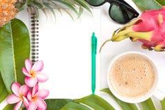 Del verano tropical de la visión superior todavía del concepto gafas de sol botánicas de la vida Fotografía de archivo libre de regalías