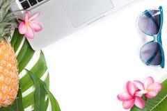 Del verano tropical de la visión superior todavía del concepto sol botánico del ordenador portátil de la vida Imágenes de archivo libres de regalías