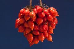 Del Vesuvio de Pomodorino del Piennolo - tomate Fotografia de Stock Royalty Free