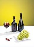 Del vino vita di lusso ancora Immagine Stock Libera da Diritti